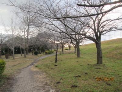 流山市の西深井・におどり公園・流山百か所めぐり(4)・葛飾早苗