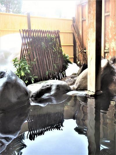 2021 冬「 温泉巡り 」 の旅 < 新潟県西蒲原郡・長岡市 >