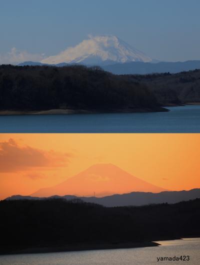 狭山湖の富士山 朝(青富士)・夕(黄金富士)Mt.Fuji in Lake Sayama/morning & evening
