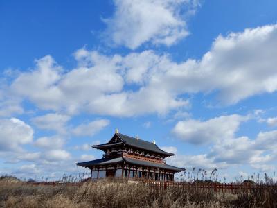 な~んもない2月の平城宮跡さんぽ♪  と思ったらあった!【福よせ雛 (奈良市は初参加)】