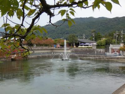 京都 岡崎 鴨東運河 南禅寺舟溜付近(Nanzenji Harbor, Oto Canal, Okazaki, Kyoto, JP)