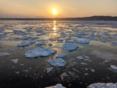 【北海道】JAL「どこかにマイル」で網走へ(流氷観光砕氷船、網走監獄)