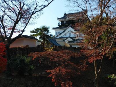 東海2020年末旅行記 【5】岡崎城