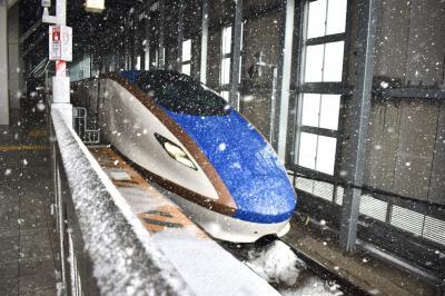 《新幹線で北陸一人旅》 初の北陸やのに雪降りすぎ