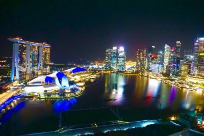 ザ・リッツ・カールトン・ミレニア・シンガポール滞在記 2021年1月