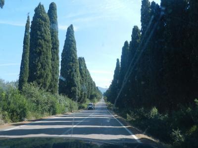 2020年9月 イタリア旅行11 今日は買い物にでかけます ボルゲリ Bolgheri