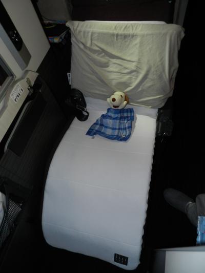 ボストン→成田/JALビジネスクラス搭乗記、そして帰国◆ボストン・ナイアガラ・プリンスエドワードの旅《その23・最終章》