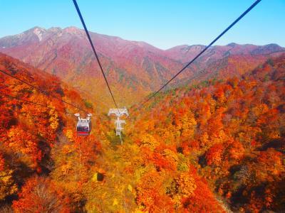 秋の谷川岳と軽井沢と古墳