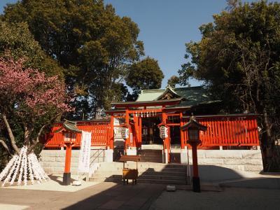2021年2月・遅い初詣と初御朱印<花園神社・馬橋稲荷神社・神明宮>