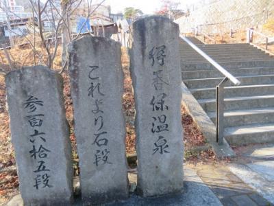 伊香保温泉の石段街散策と長峰公園展望台・高根展望台からの眺望を楽しむ