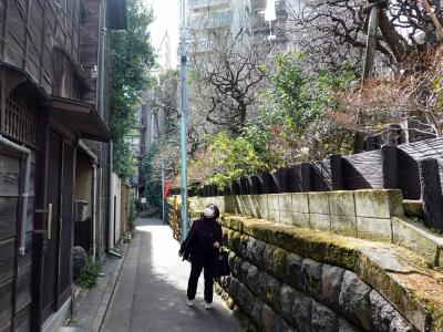 東京観梅紀行(湯島から上野へ)