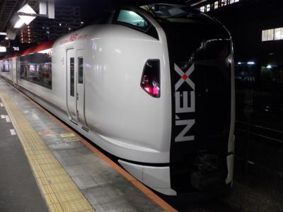 M FEB 2021  プチテツⅢ・・・・・高尾N,EX惜別乗車