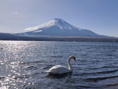 山中湖 富士山ハイキング