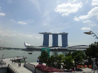 ANA・SFC取得の為の第一歩の旅はシンガポールから!
