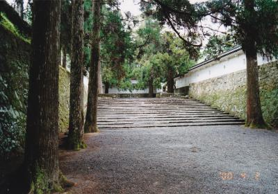 南九州(鹿児島・宮崎) 家族旅行