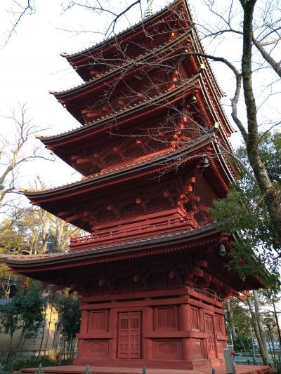 【マイクロツーリズム】ずっと気になっていた正中山法華経寺に行ってみた