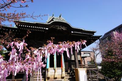 春を感じる散策、桜新町へ