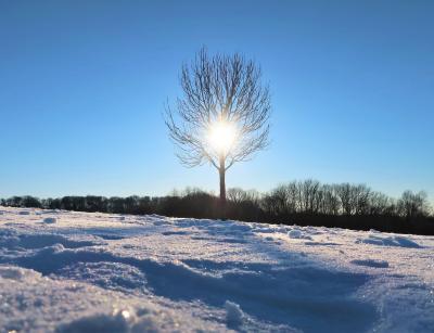 ドイツ デュッセルドルフ Winter Wonderland