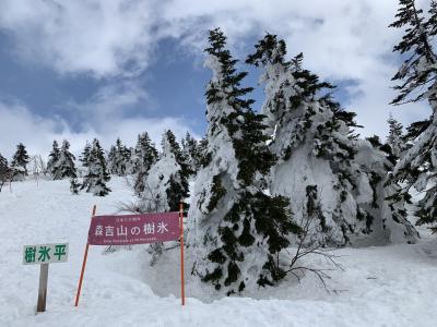 ゴンドラ山歩で樹氷鑑賞&あめっこ市