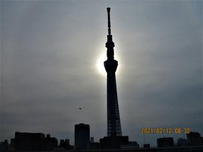 浅草・上野・深川のグルメ:東京スカイツリーの写真