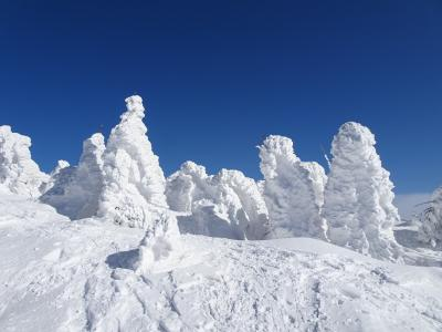 秋田の山旅♪樹氷の森吉山&雪の名峰絶景フライト