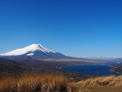 富士山と山中湖とアルプスの絶景!パノラマ台からの、鉄砲木ノ頭
