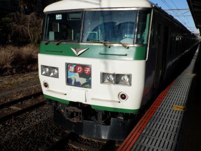 M FEB 2021  プチテツⅣ・・・・・⑤185系踊り子惜別乗車