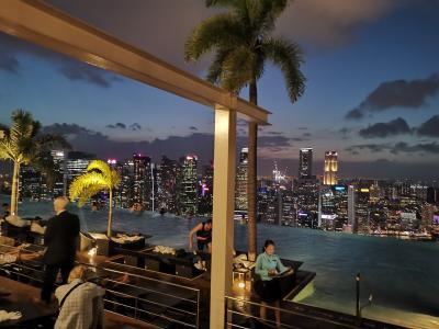 スクートで行く!憧れのマリーナベイサンズに泊まるシンガポール3泊4日の旅②