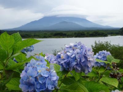 幻の富士六湖の赤池を見てきた!&そのまま南部町方面へ