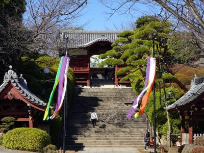 東京の古寺を巡る(護国寺と伝通院)