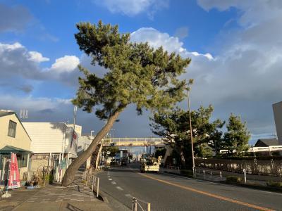 2021年 東海道五十三次・旧街道を歩く-四日目(6.藤沢宿~7.平塚宿)