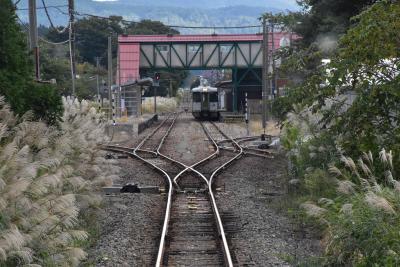 羽越・米坂線に乗り飯豊梅花皮荘へ2020~鉄道旅と白い森の国「小国」~(新潟・山形)