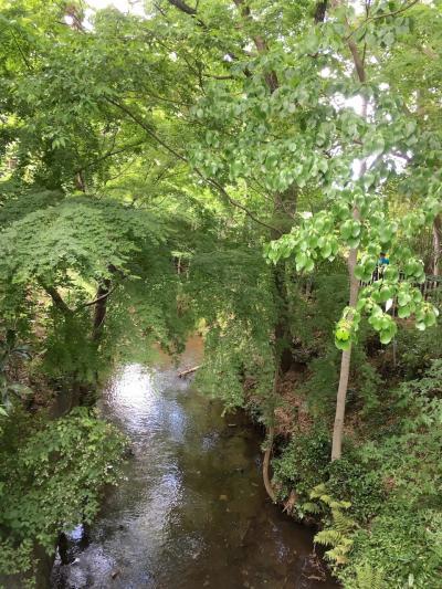 三鷹市・玉川上水の終点を目指して