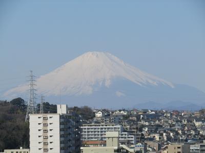 上倉田水神ヶ谷公園から見る富士山-2021年早春