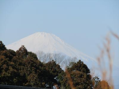 明治学院大・遠望橋脇から見る富士山-2021年早春