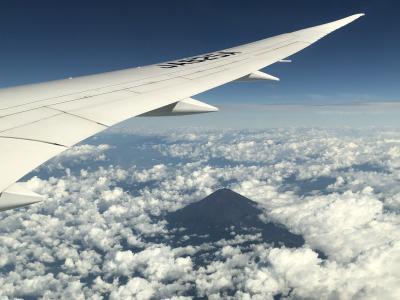 大阪②全日空NH17便(羽田-伊丹間)搭乗記♪羽田空港第2ターミナルの『ANAラウンジ(本館南)』&『エアポートラウンジ(南)』巡り(^^♪