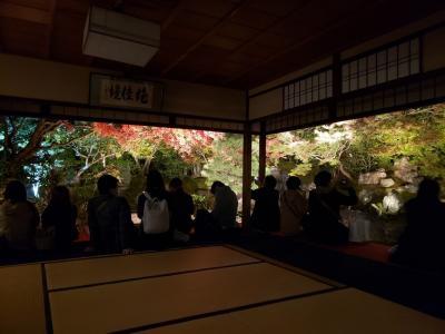 京都 高台寺ライトアップ