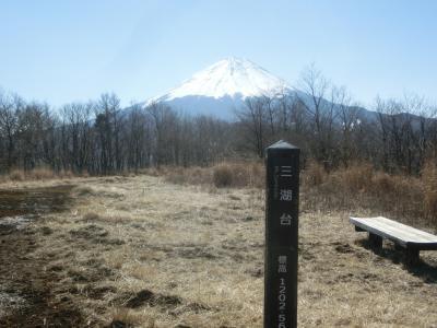 2021冬 山梨:足和田山、三湖台と世界遺産 忍野八海
