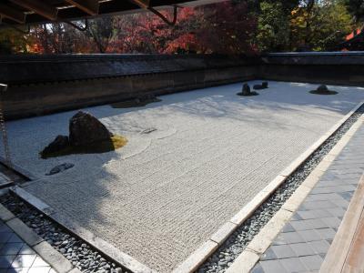 3年ぶりの京都 紅葉の龍安寺