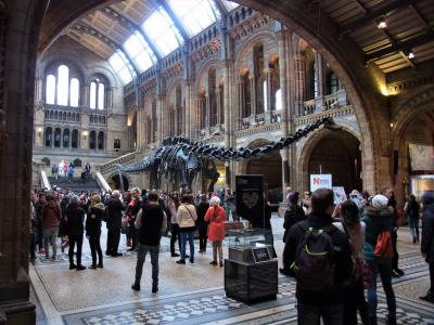 ロンドンの自然史博物館(2014年)(2009年追加写真)