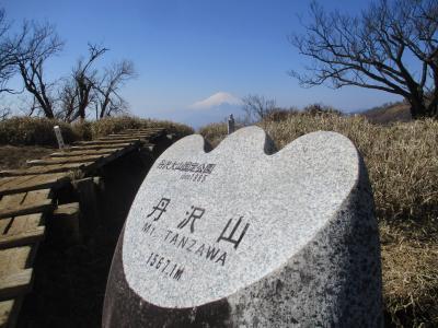 絶景の富士山 百名山「丹沢山」(神奈川)登山