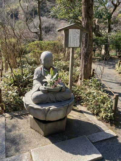 奈良、あきらめ・・・あらため・・・鎌倉へ