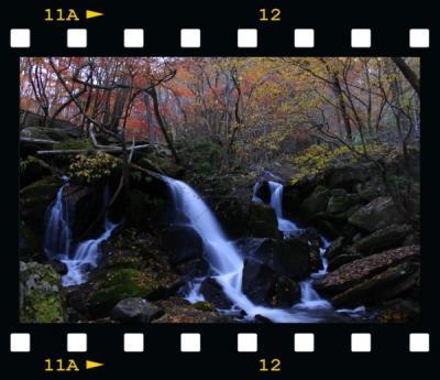 ◆東北最南端~晩秋に色付く滝川渓谷(銚子の口滝&桂木の滝)