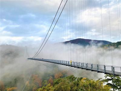 2020 NOV 福岡からの日帰り九重ドライブ ワイナリーからの~紅葉の大吊橋