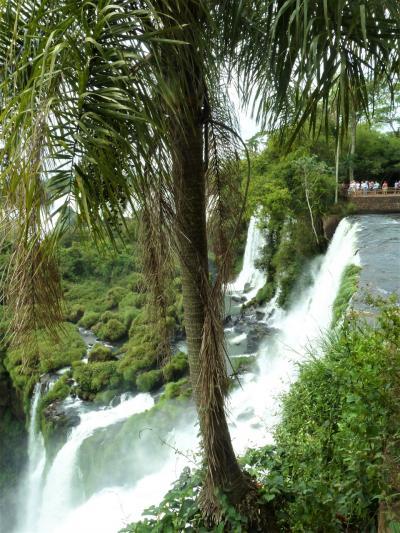 パノラマ写真集2021 04南米の旅からイグアスの滝アルゼンチンサイド