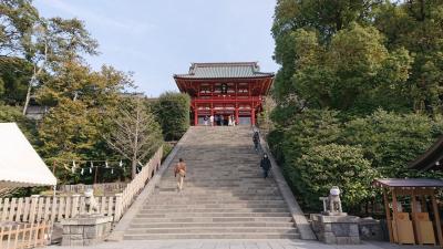 鶴岡八幡宮でお祓いし、鎌倉駅周辺を観光