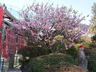 東海36不動尊霊場の旅 3回目 名古屋市内を巡る旅