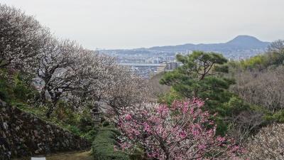 ゴンママが旅行中で、中山寺に参拝しました その2。