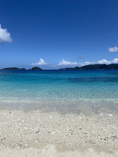 シーズンの沖縄気候傾向