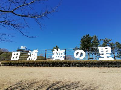 田浦 梅の里へ 🌼 娘とドライブ